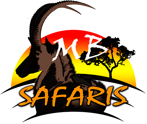 This is the logo of MB Safaris located in Limpopo, South Africa